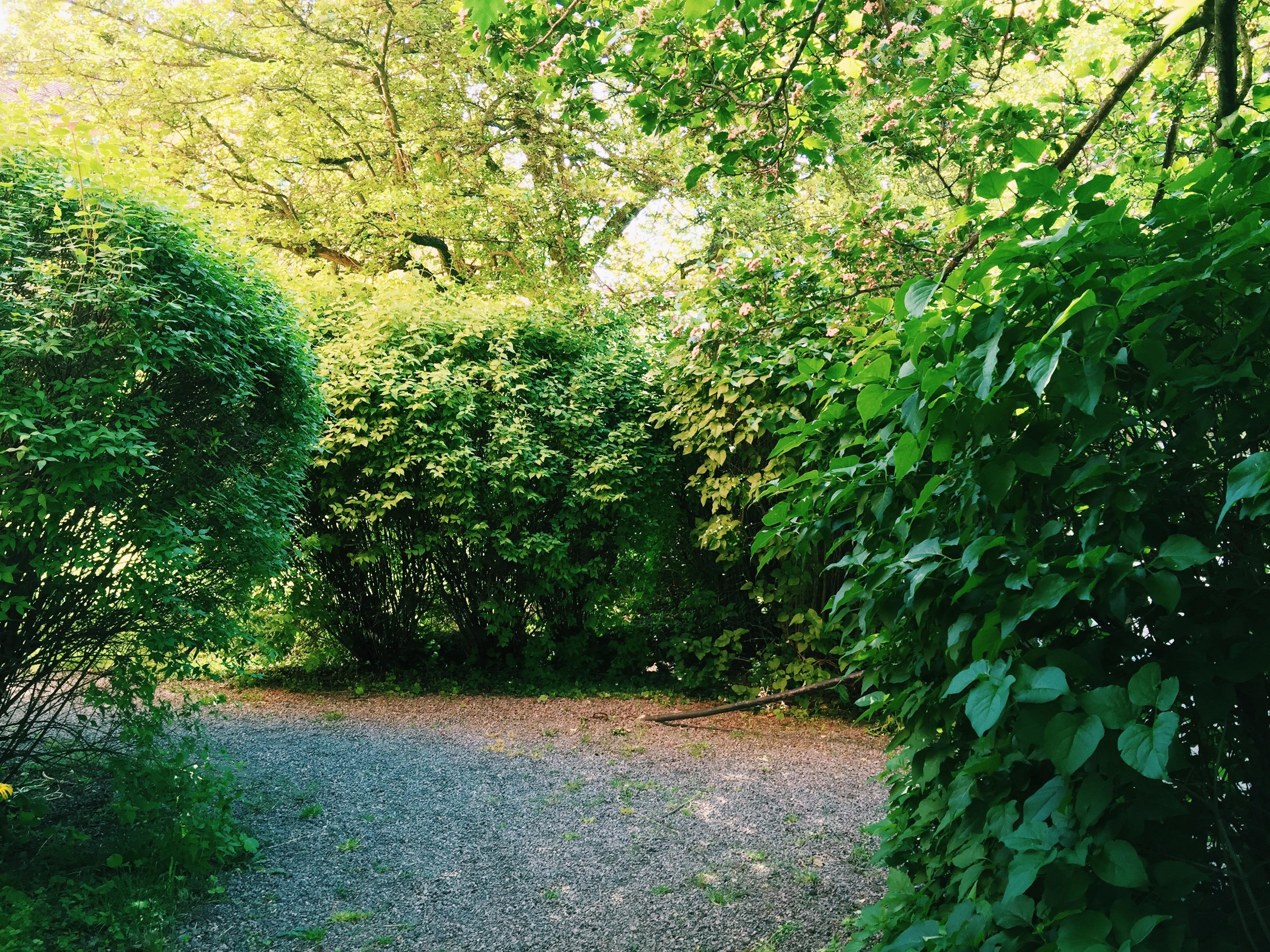 secret-garden-feature