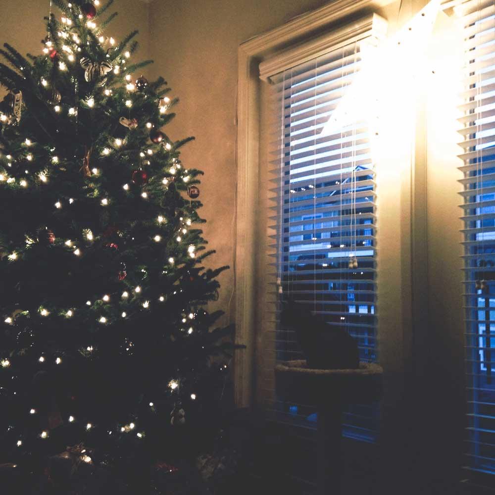 sunrise-solstice-christmas-tree