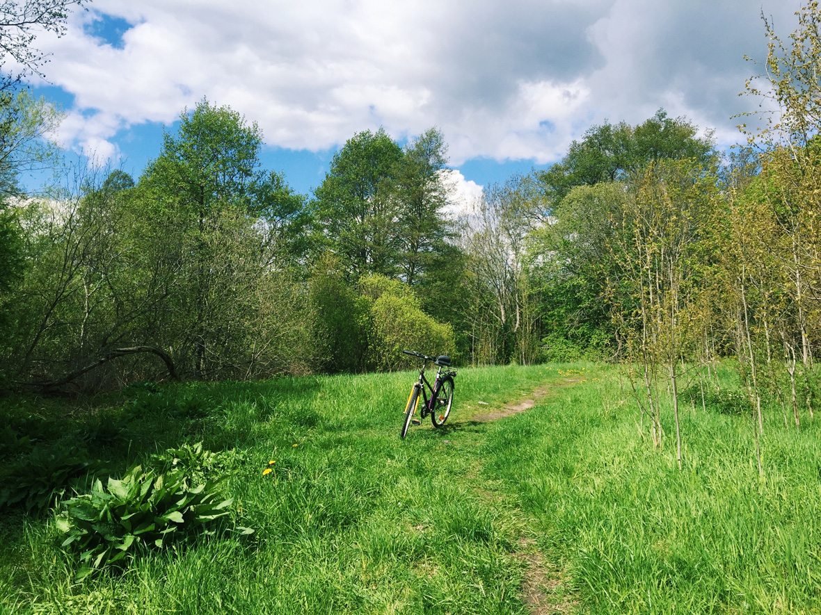 bike-country-uppsala