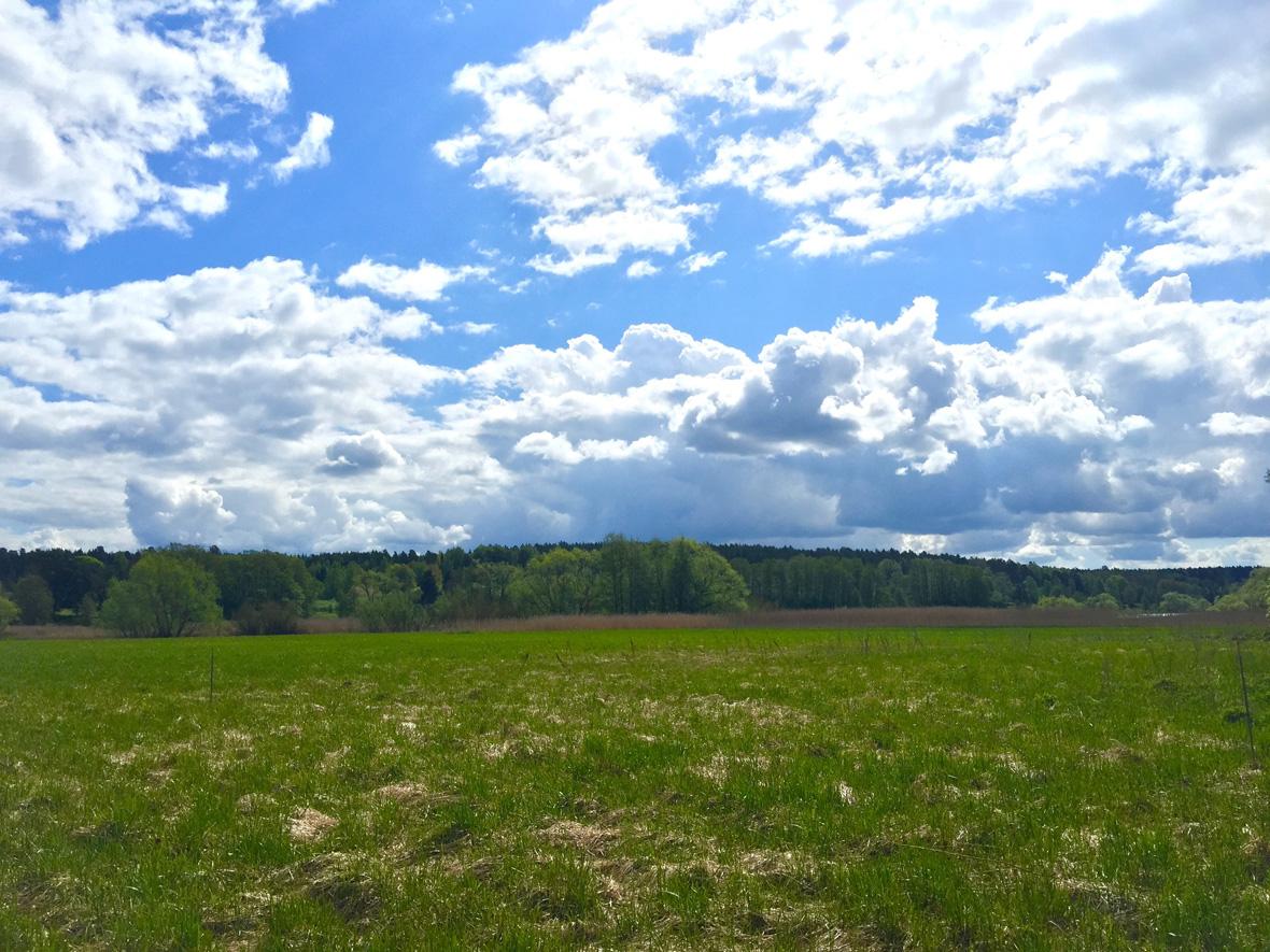 country-field-uppsala