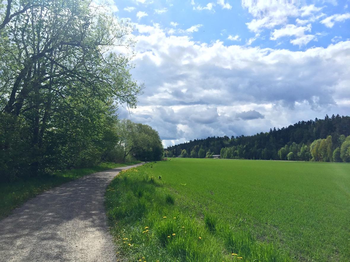 path-countryside-uppsala
