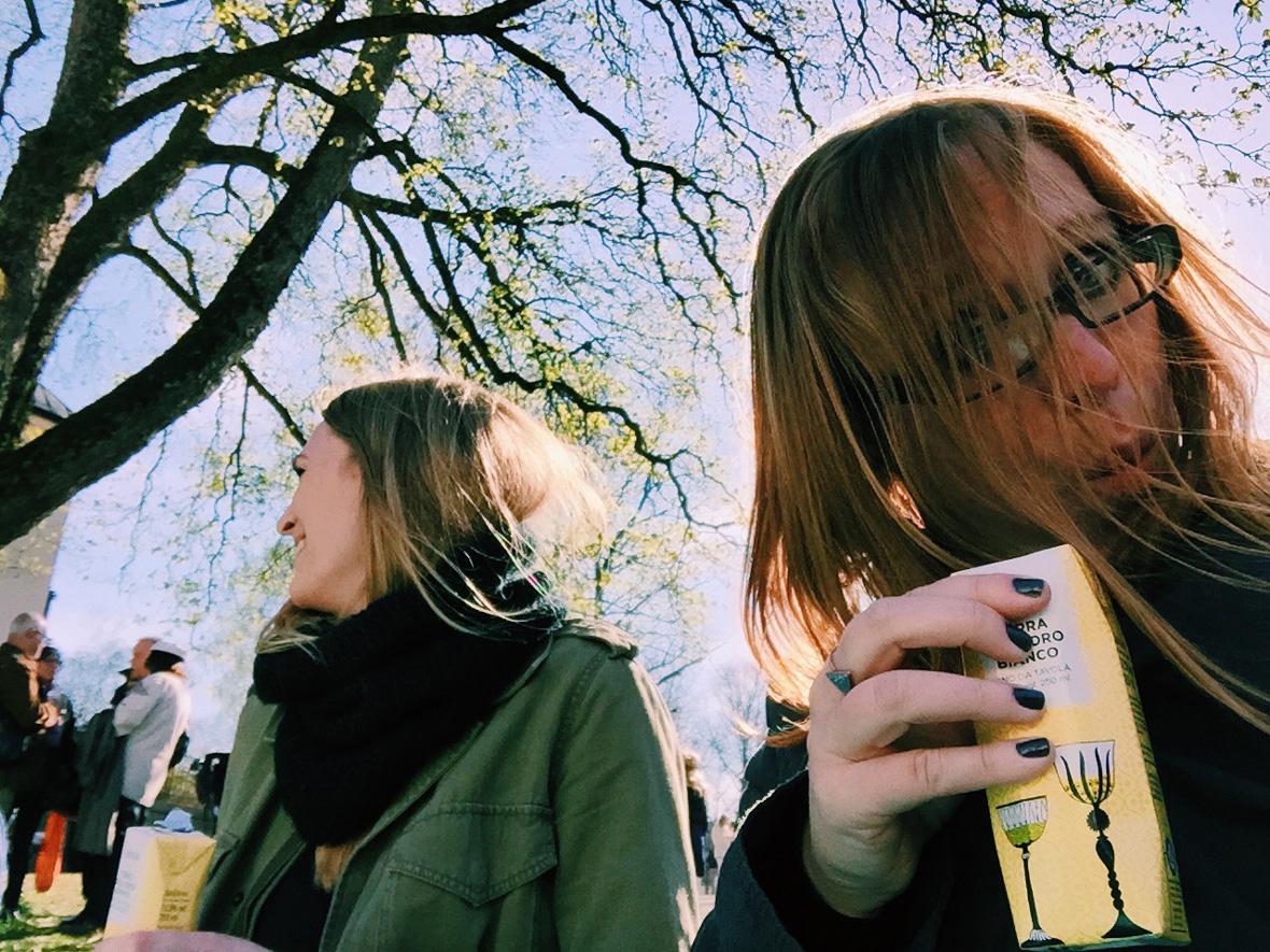 wine-picnic,-park-valborg-me-lina
