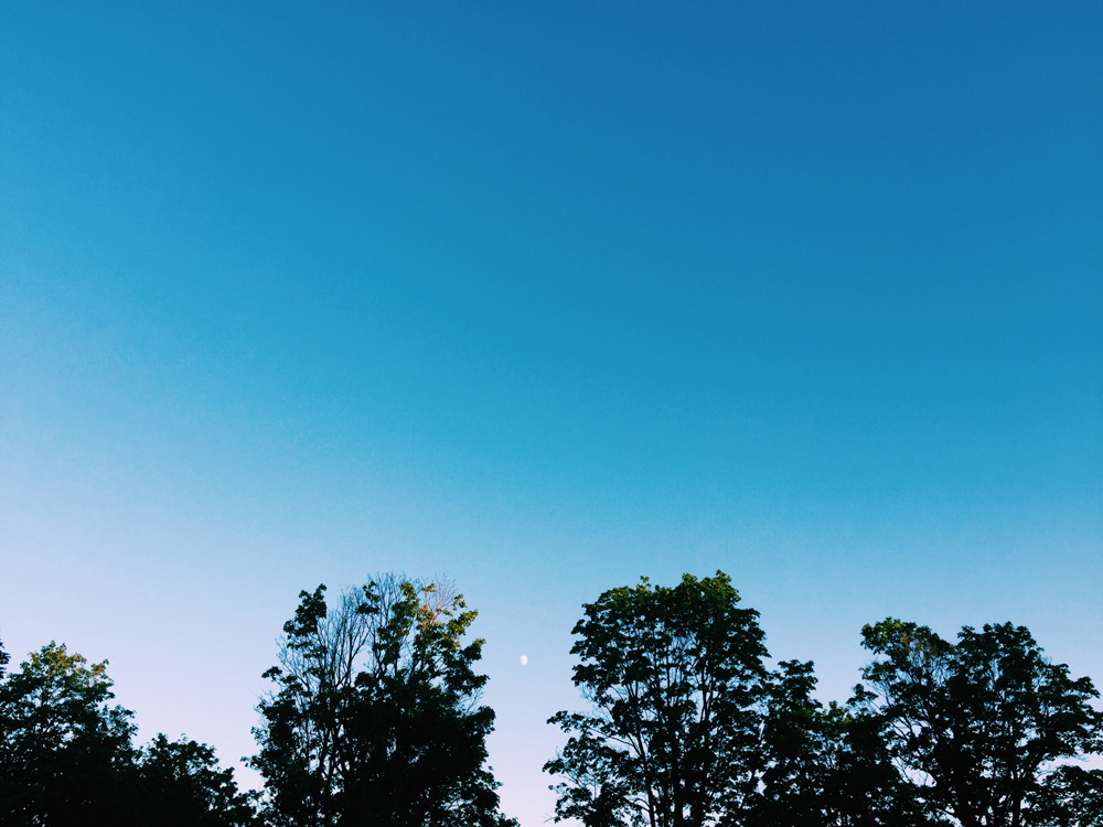 moon-summer-walk