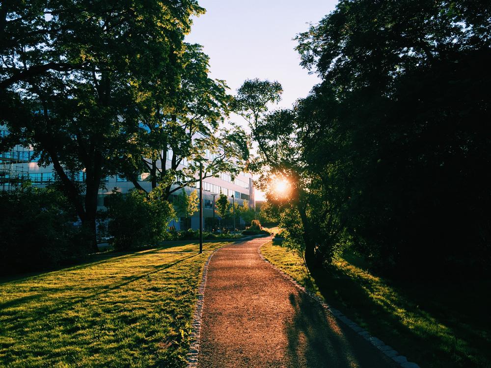 neighborhood-uppsala-sunset-walk.-2
