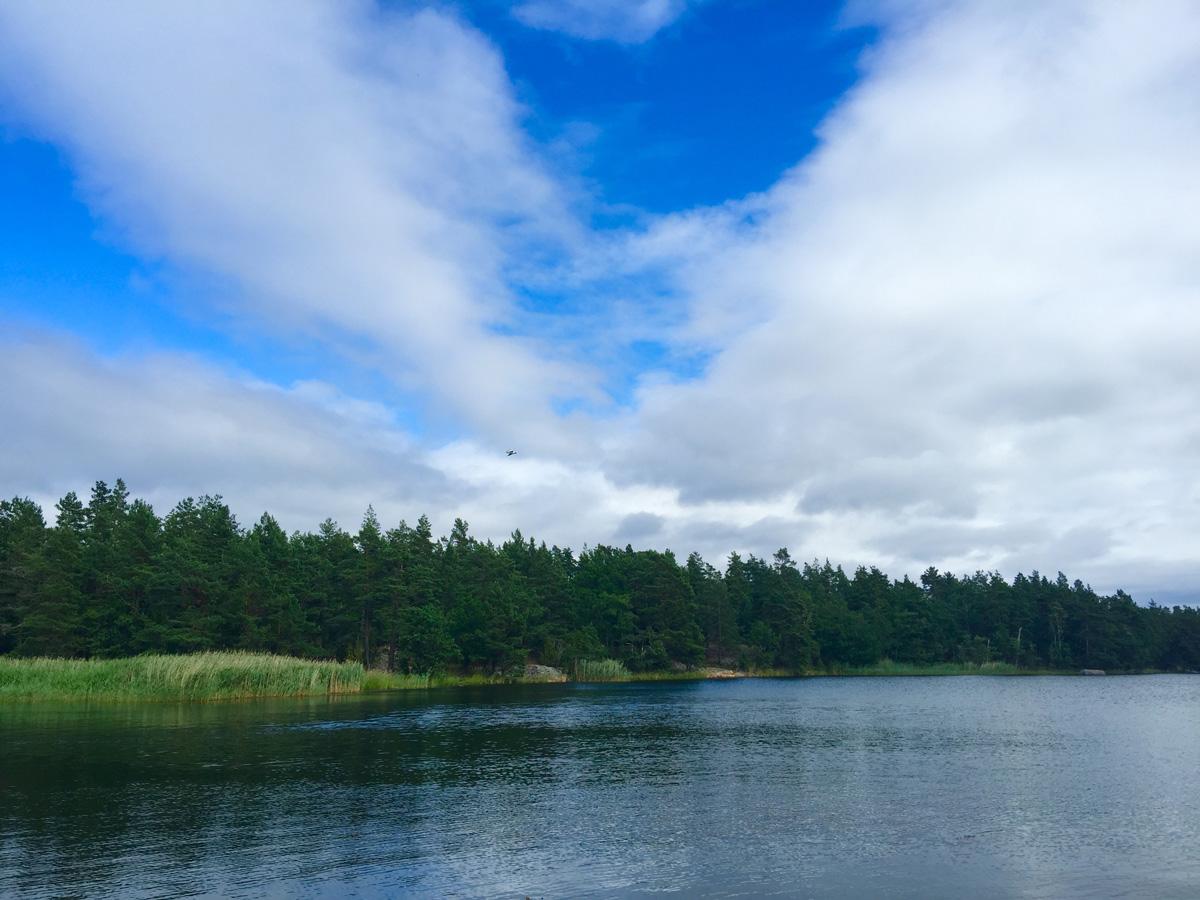 green-trees-water-skeppsgarden
