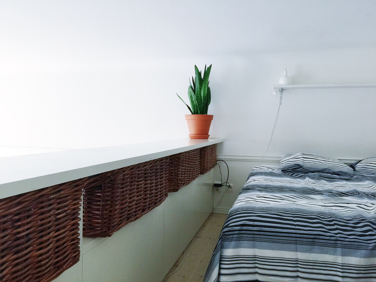 airbnb-loft-plant