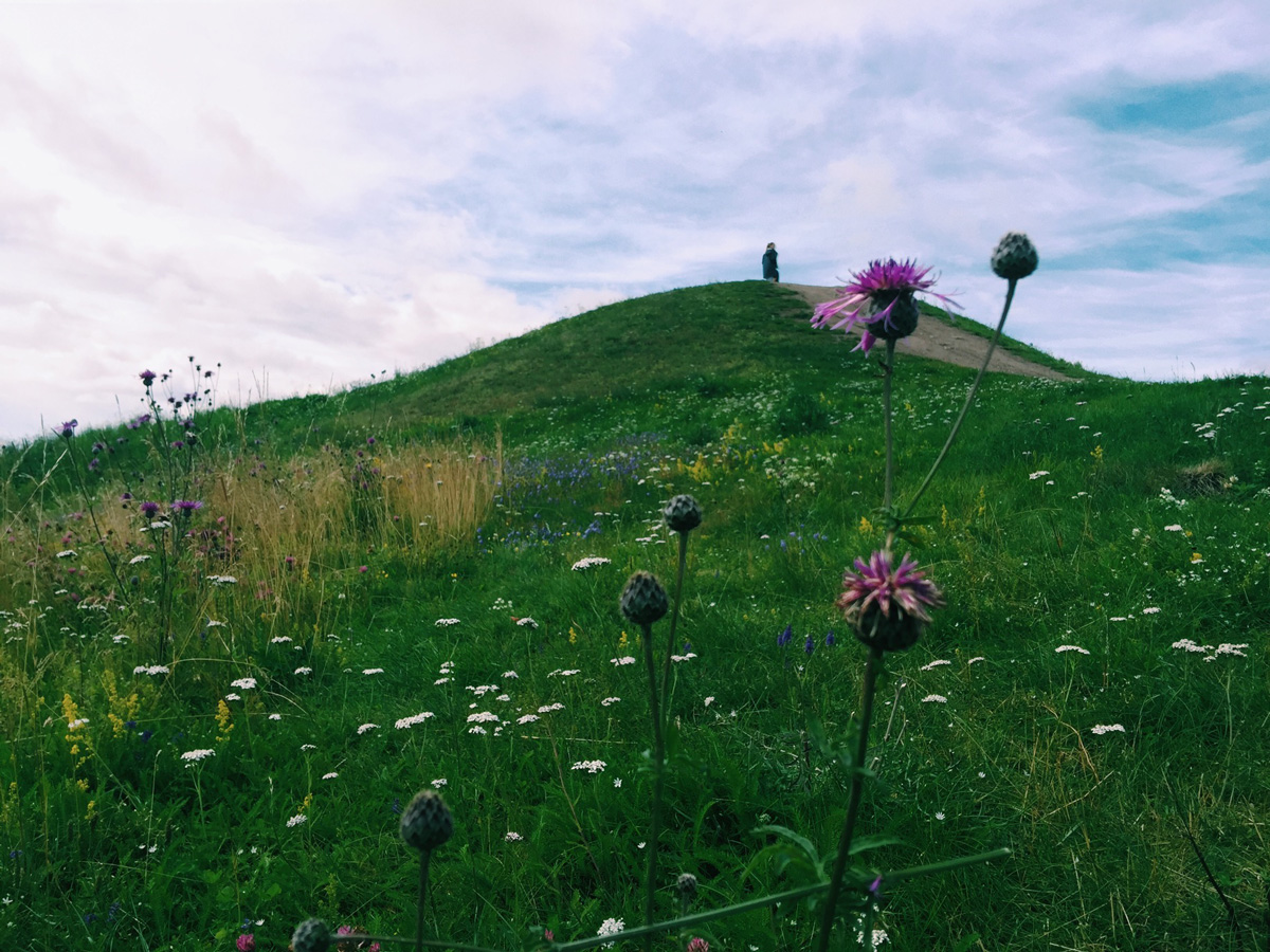 gamla-uppsala-flowers