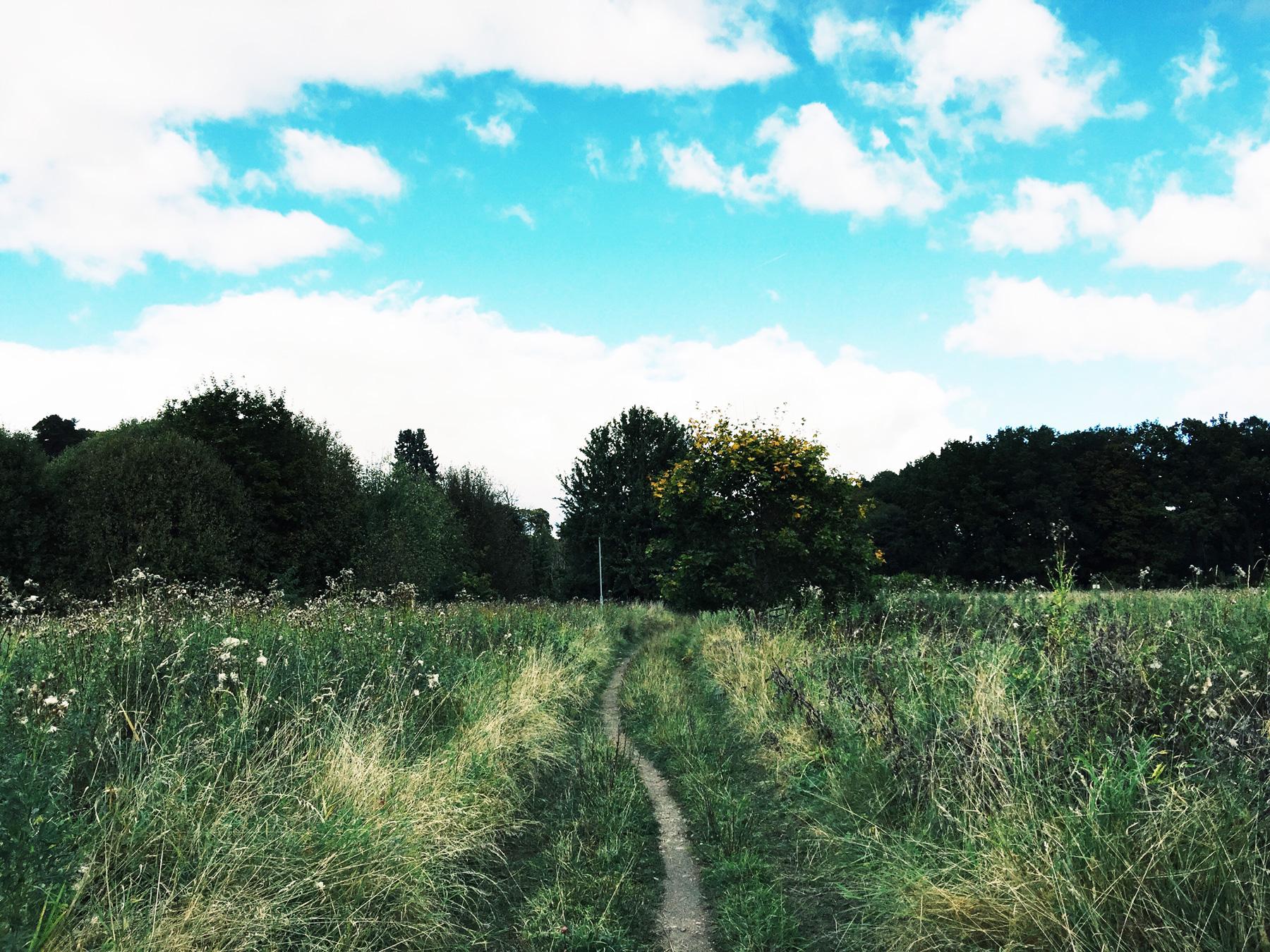 path-field-uppsala