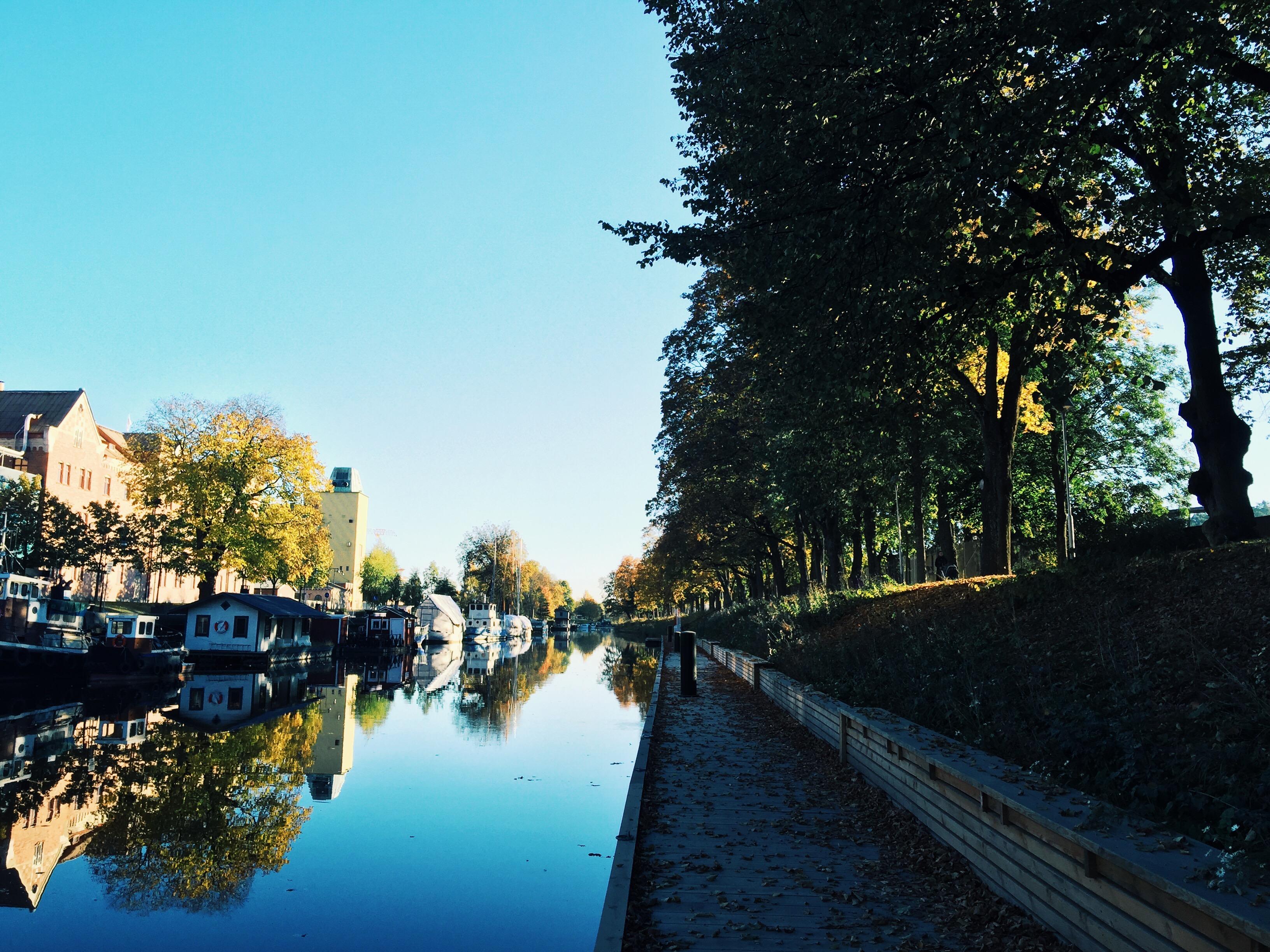 river uppsala autumn