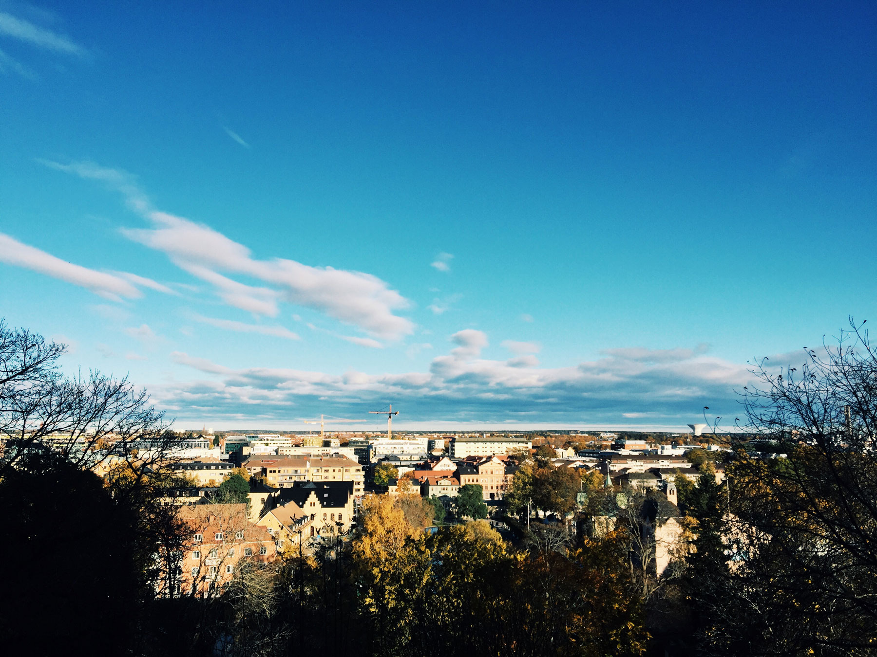 uppsala-autumn-view