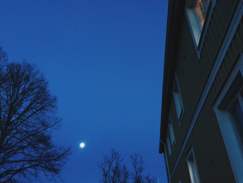 moon home uppsala