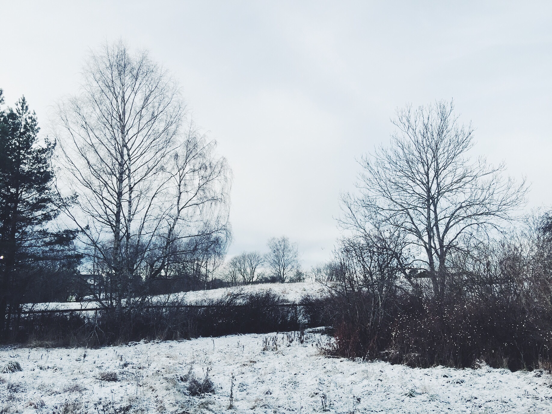 snow countryside sweden