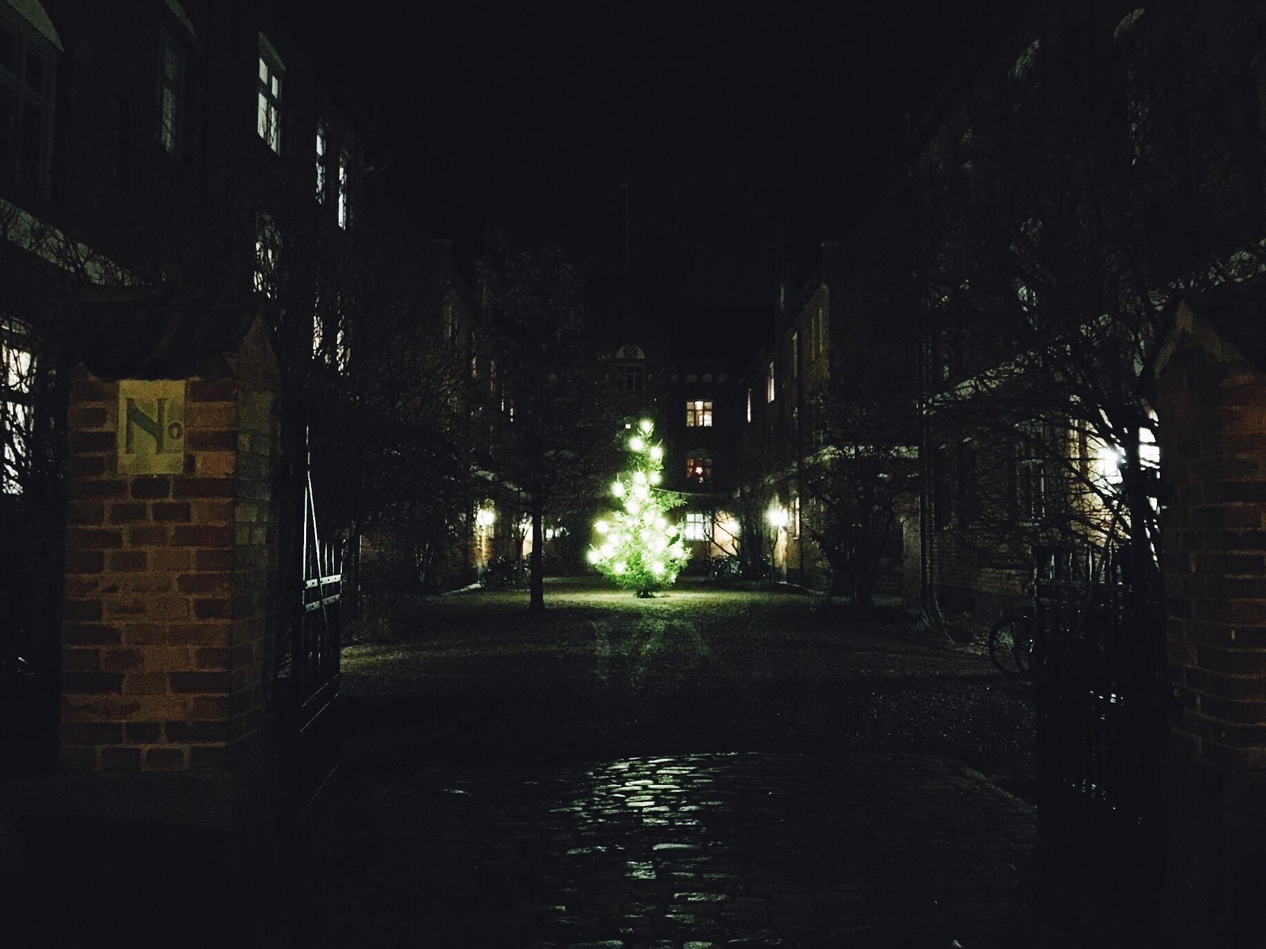 christmas tree uppsala