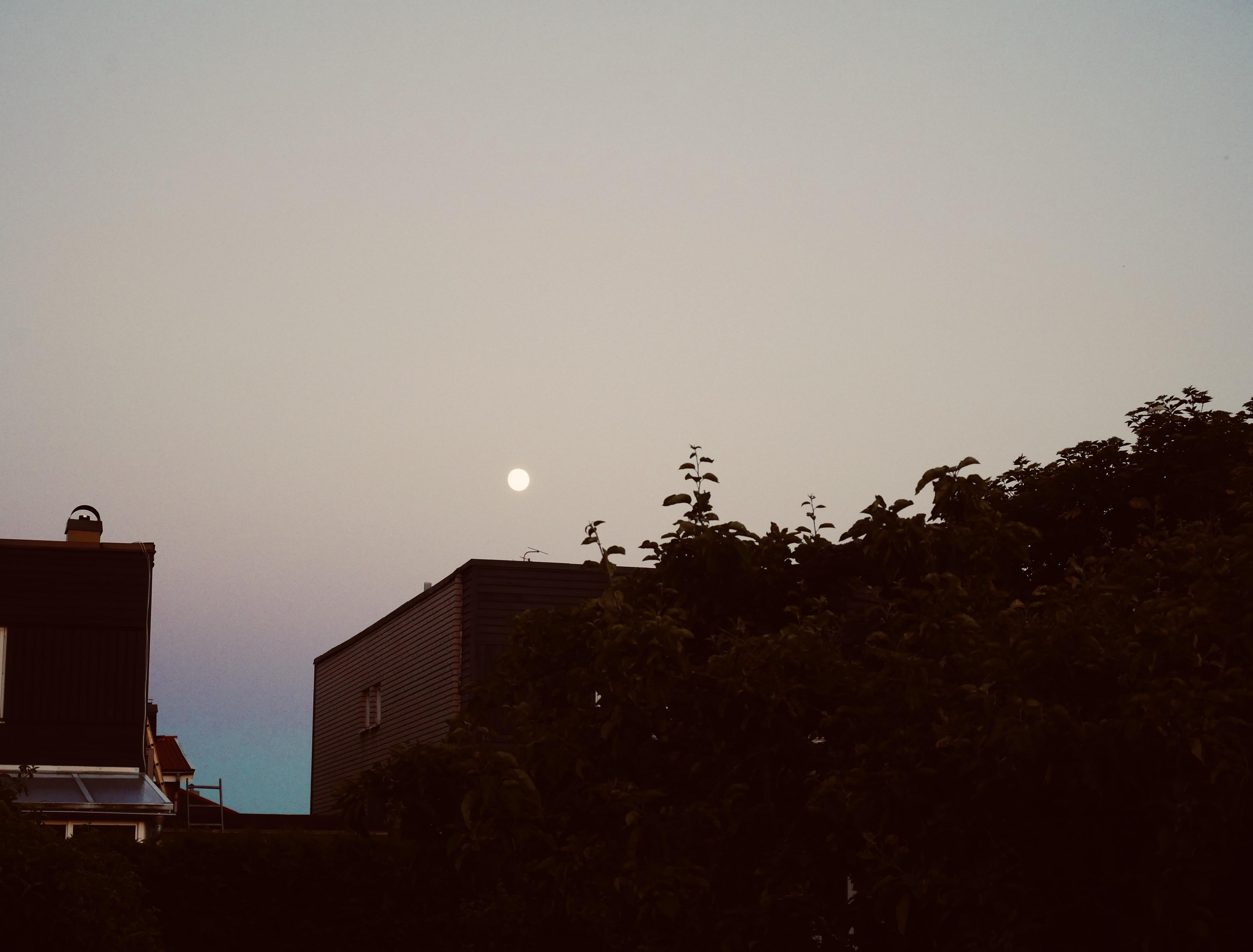 abundance full moon june